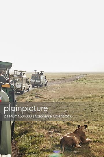 Mehrere Jeeps auf Safari im Ngorongoro Krater - p1146m1584389 von Stephanie Uhlenbrock
