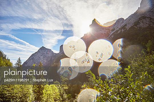 p429m1198291 von Stephen Lux