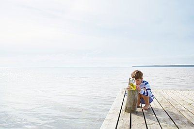 Boy examining seaweed in jar on sunny lakeside dock - p1023m1172718 by Francis Pictures