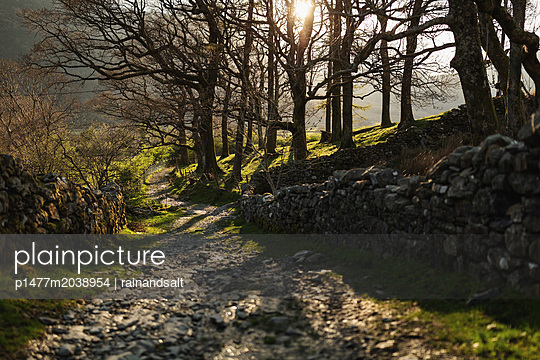 Wanderweg im Lake District - p1477m2038954 von rainandsalt