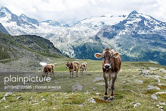 p713m2122585 by Florian Kresse