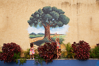 Wall - p1636m2216342 by Raina Anderson