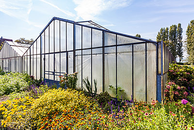 Germany, Constance district, Reichenau Island, Niederzell, greenhouse - p300m1587495 by Werner Dieterich