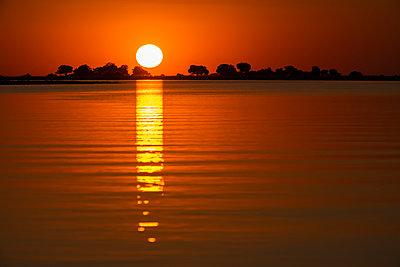 Sunset over the Chobe River; Botswana - p442m2039421 by Robert Postma