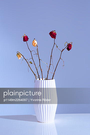 Withered flowers - p1149m2264097 by Yvonne Röder