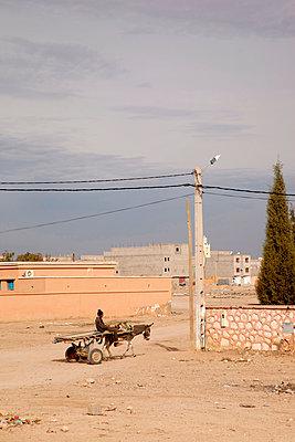 Man with donkey - p382m1194956 by Anna Matzen