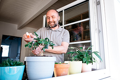 Man spraying water on potted plant in house - p300m2276056 by Katharina Mikhrin
