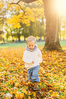 Little boy playing in autumn leaves in Sweden - p352m1536612 by Calle Artmark