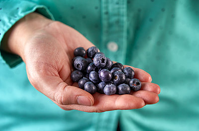 Close up portrait of hand of fresh blueberries. - p1166m2111742 by Cavan Images
