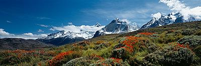 Torres del Paine - p844m1118985 von Markus Renner