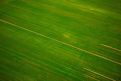 Aerial view of green field, Croatia - p1026m992068f by Romulic-Stojcic