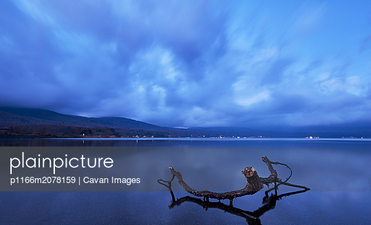 Tree trunk in the water at sunrise, lake Yamanaka, Yamanashi - p1166m2078159 by Cavan Images
