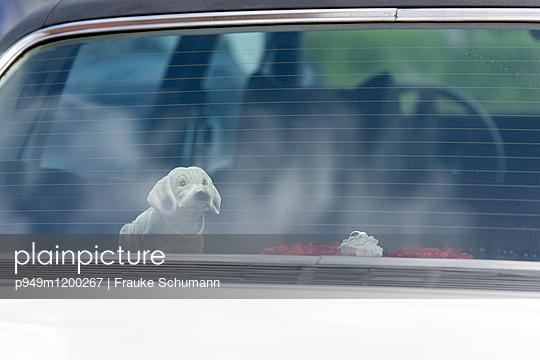 Wackeldackel im Auto - p949m1200267 von Frauke Schumann