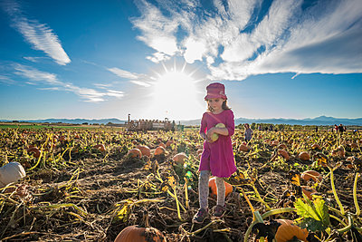 Full length of girl holding vegetables while standing at pumpkin patch against sky during sunny day - p1166m2025074 by Cavan Images