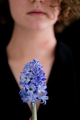 Hyacinth - p1212m1120237 by harry + lidy