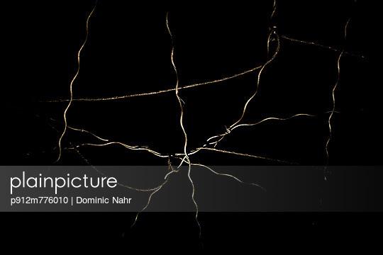 p912m776010 von Dominic Nahr