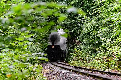 Steyrtalbahn mit alter Dampflokomotive fährt durch den Wald - p1463m2291999 von Wolfgang Simlinger