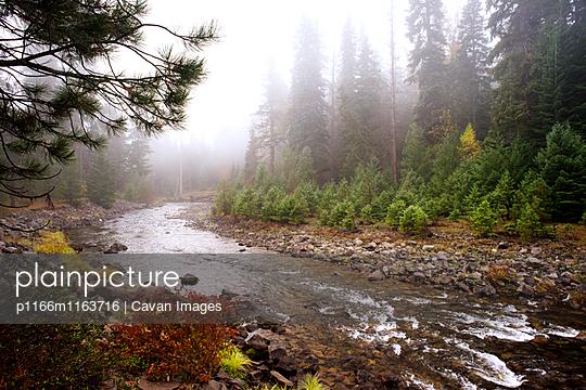 p1166m1163716 von Cavan Images