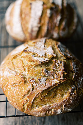 Fresh homemade sourdough bread on a cooling rack. - p1166m2189733 by Cavan Images