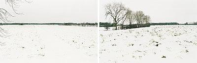 Schneeelandschaft - p1205m1020943 von Annet van der Voort