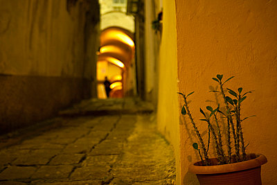 Flower pot on a narrow yellow painted street at night in Italy - p3313618 by Andrea Alborno