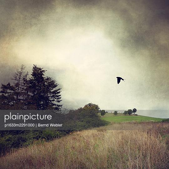 The Lonely Summer I - p1633m2291000 by Bernd Webler