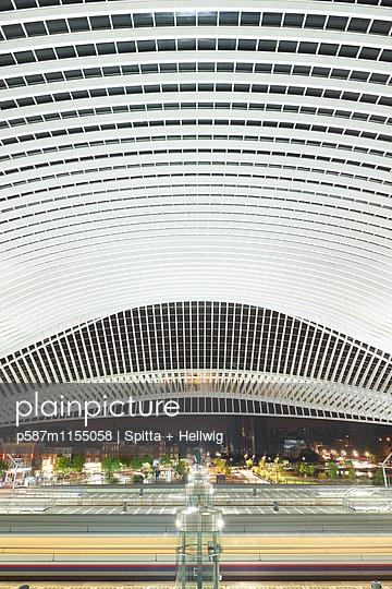 Bahnhof Liège-Guillemins in Lüttich, Dachkonstruktion - p587m1155058 von Spitta + Hellwig