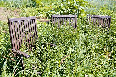 Gartenarbeit - p1043m1462580 von Ralf Grossek
