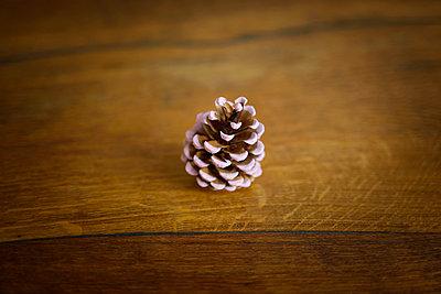 Kleiner Kiefernzapfen - p214m1138173 von hasengold