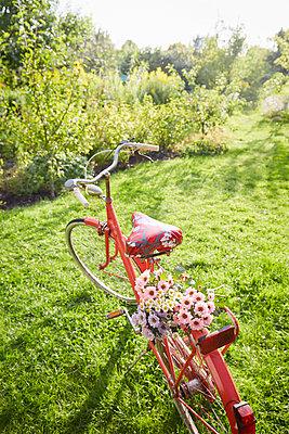 Blumenstrauß - p464m1496661 von Elektrons 08