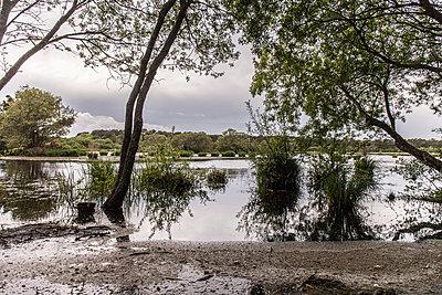 A lake - p1402m1573531 by Jerome Paressant