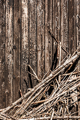 Branches - p248m1025478 by BY