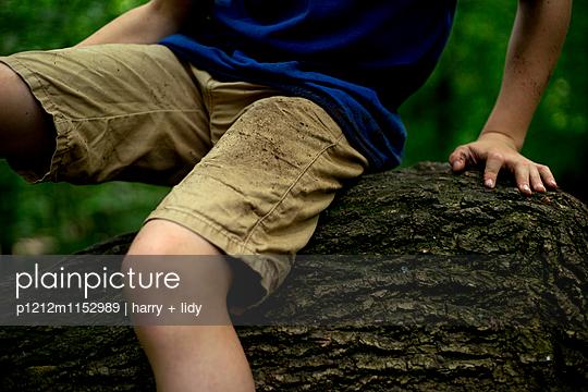Junge hebt Ast im Wald - p1212m1152989 von harry + lidy