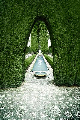 Garden of the Alhambra - p1093m855404 by Sven Hagolani