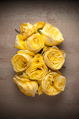 Bunch of yellow rose heads on a wooden surface - p1302m1510409 by Richard Nixon
