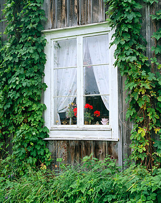 Window in an old house. - p5750316 by Roine Magnusson