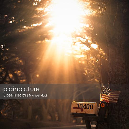 Amerikanischer Briefkasten im Sonnenlicht - p1324m1165171 von michaelhopf