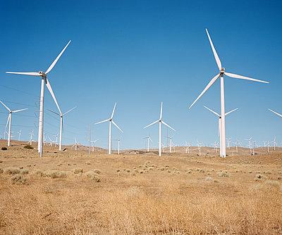Mojave Windmills - p1431m2247639 by Daniel R. Lopez