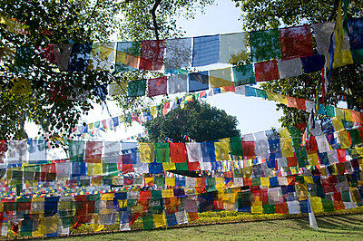Prayer flags - p310m815085 by Astrid Doerenbruch