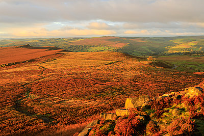 Hathersage Moor from Higger Tor, sunrise in autumn, Peak District National Park, Derbyshire, England, United Kingdom, Europe - p871m1520645 by Eleanor Scriven
