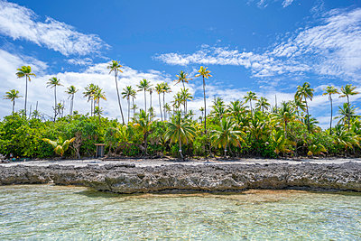 Polynesia, Turquoise lagoon and palm trees of Tetiaroa atoll - p1487m2253927 by Ludovic Mornand