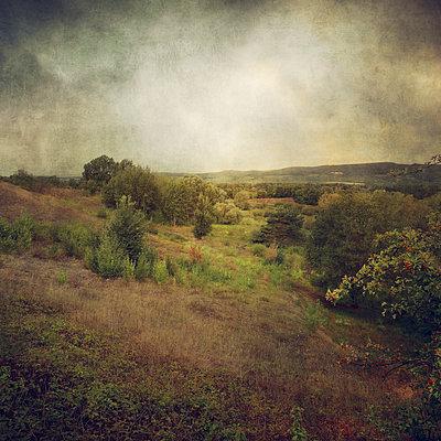 Landscape - p1633m2211113 by Bernd Webler
