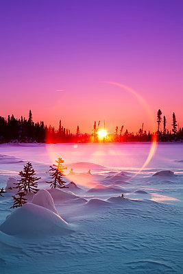 Sun flare glowing over a winter landscape; Trapper Creek, Alaska, United States of America - p442m1442259 by Ed Boudreau