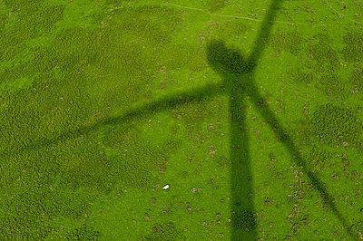 Schaf im Schatten eines Windrades - p1079m890347 von Ulrich Mertens