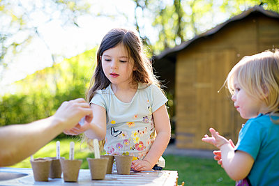 Father giving seeds to girl while gardening on table at yard - p300m2206535 by Biederbick&Rumpf