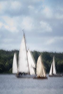 Regatta auf der Havel - p739m815250 von Baertels