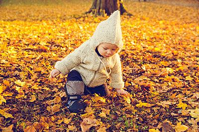 Baby im Herbst - p904m1193459 von Stefanie Päffgen