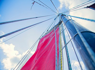 Mast of sailing boat, low angle view - p429m1105641 by Planet Pictures