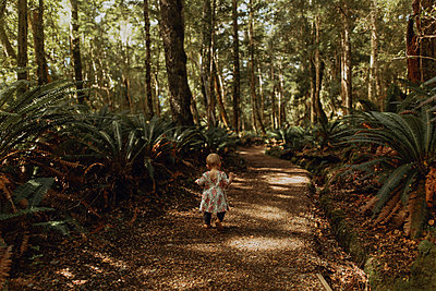 Baby girl exploring forest, Queenstown, Canterbury, New Zealand - p924m2098319 by Peter Amend