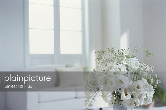 White flowers with sofa in background